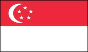 Interkulturelles Singapur Training